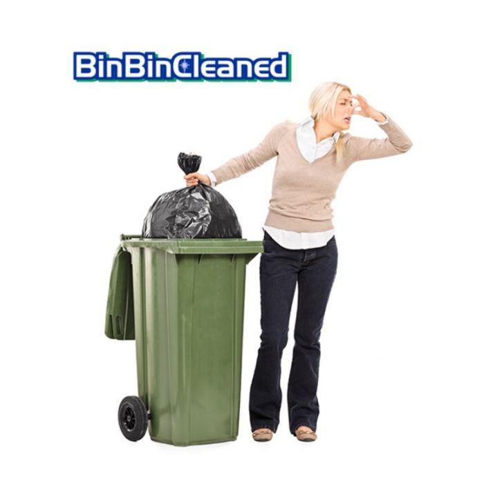 Binbin cleaned 4
