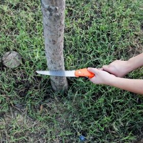 Ace Camp Folding Survival Hand Saw: Handy for camping and hiking!