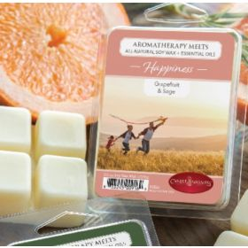 Aromatherapy Melts (All Natural Soy Wax and Essential Oils) by Candle Warmers