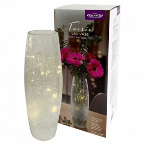 Beautiful Faerie LED Light Glass Vase: Bling up your home decor!
